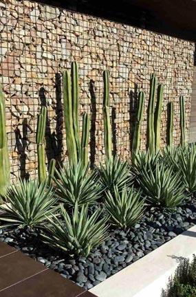 Mur de décoratifs de gabions
