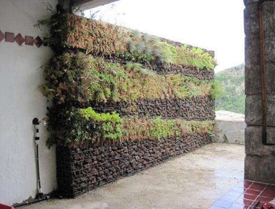 Mur végétalisé et remplis de pierres de pouzzolane